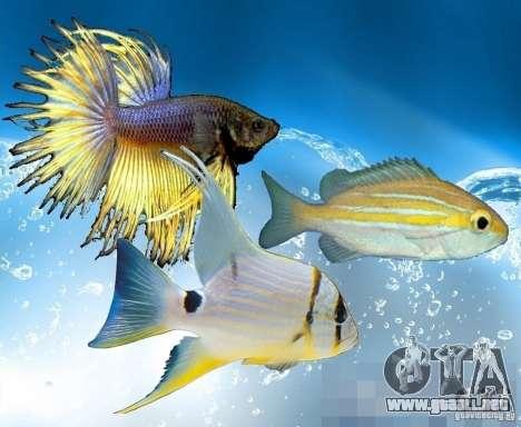 Nuevos peces (océano) para GTA San Andreas