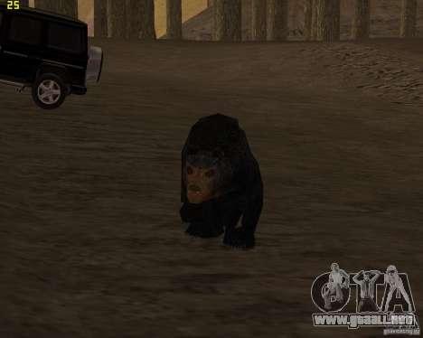 Oso para GTA San Andreas