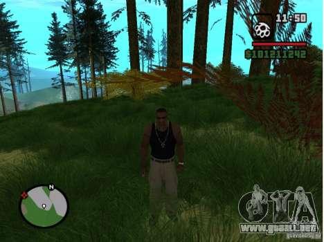 Real Grass v1.0 para GTA San Andreas segunda pantalla