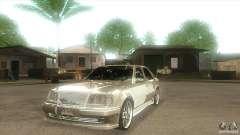 Mercedes-Benz E500 VIP Class