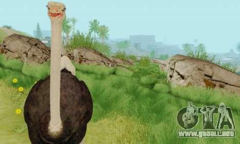 Ostrich From Goat Simulator para GTA San Andreas sucesivamente de pantalla