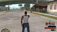 C-HUD by Martin para GTA San Andreas