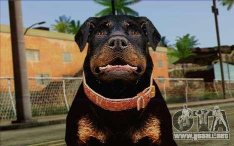 Rottweiler from GTA 5 Skin 3 para GTA San Andreas tercera pantalla