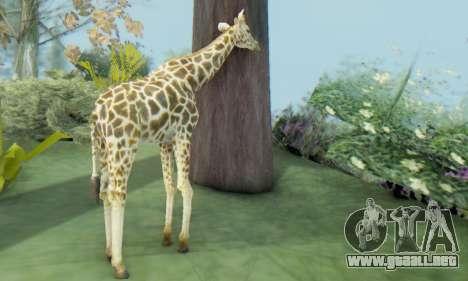 Giraffe (Mammal) para GTA San Andreas tercera pantalla