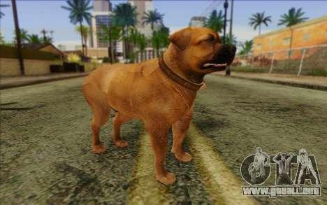 Rottweiler from GTA 5 Skin 2 para GTA San Andreas