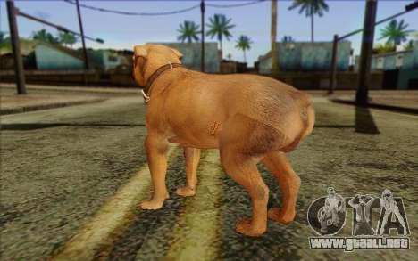 Rottweiler from GTA 5 Skin 2 para GTA San Andreas segunda pantalla