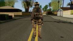 Task Force 141 (CoD: MW 2) Skin 13