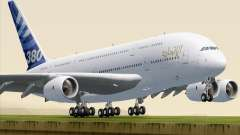 Airbus A380-800 F-WWDD Etihad Titles