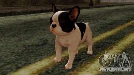 French Bulldog para GTA San Andreas