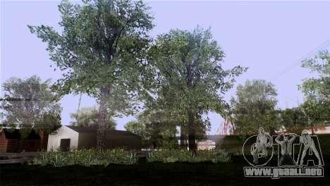 La textura de los árboles de la MGR para GTA San Andreas