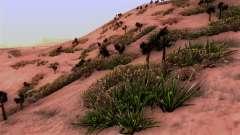Textura Real de la vegetación