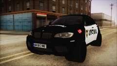 BMW X6 Georgia Police