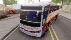 Nusantara Bus Setra Adi Putro Smile Lamp